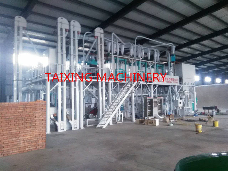 30 ton per day maize flour milling plant installed successfully