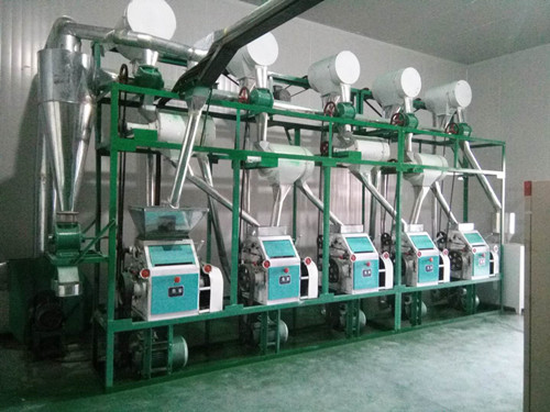 20-30T/D Fully Automatic Complete Wheat Flour Mill