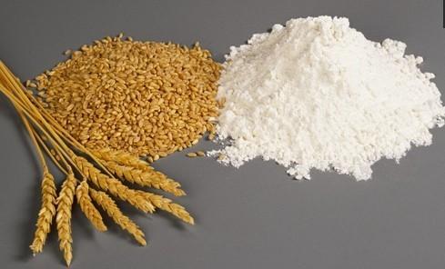20T Automatic Wheat Flour Milling Plant Project