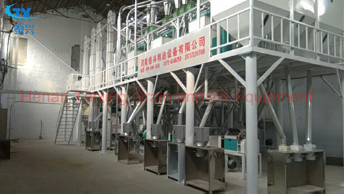 Sorghum processing equipment
