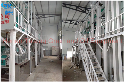 30 T/D Maize Milling Machine Plant Finished
