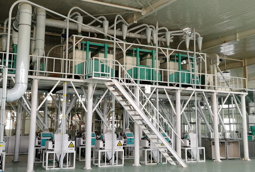 50ton/24H wheat processing equipment wheat flour mill plant